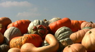 Stock Video Footage of Piles of gourds