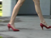 Stock Video Footage of Luscious Female Legs