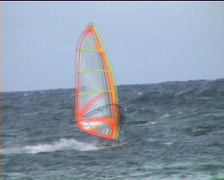 Windsurfing Hawaii Stock Footage
