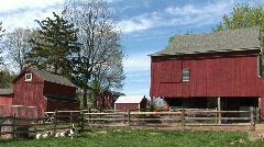 Pennsylvania Dutch farm and goats Stock Footage