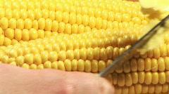 Studio shot of Corn Stock Footage