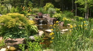 Stock Video Footage of Gorgeous rock garden with koi