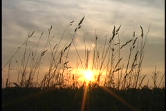 Untitled Clip 01100 sunset 1 Stock Footage