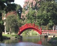 Japanese Garden Stock Footage