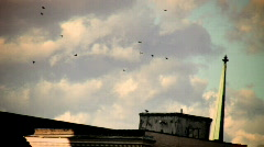 Birds ambient  sunset rooftop () Stock Footage