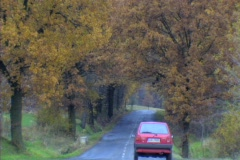 Car driving through autumn Stock Footage