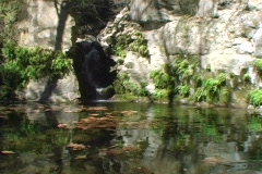 Natural Pool Stock Footage