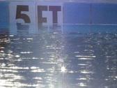 Pool 05 Stock Footage
