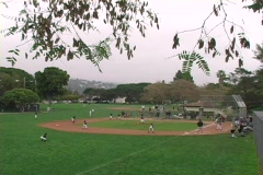 Little League Baseball - stock footage