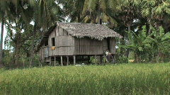 Cambodia: Typical rural house Stock Footage