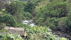 Maui Iao Valley grass hut and river HD Stock Footage