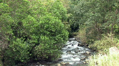 Maui Iao Valley river HD Stock Footage