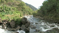 Maui Iao Valley stream HD Stock Footage