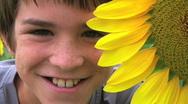 Boy Beside Sunflower Stock Footage