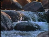 Rocky mountain stream Stock Footage