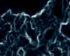 Growing Bacteria Stock Footage
