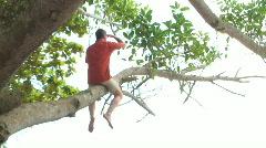 HD: Man sitting in a tree Stock Footage