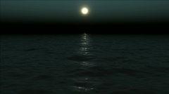 Moonless Ocean Stock Footage