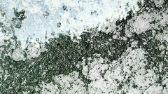 Silver Bleed Stock Footage