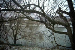 Snow trees (powshot tl) Stock Footage
