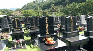 Stock Video Footage of Hawaii Japanese cemetery with fruit offering HD