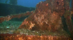 Artificial reef a metal boat wreck in the Philippines Stock Footage