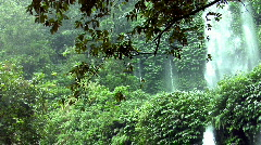 Rain waterfall jungle Stock Footage