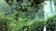Rain waterfall jungle Stock Footage