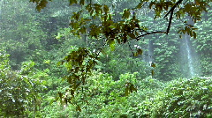 rain forrest waterfall - stock footage