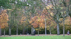 Full fall colors in public park. Stock Footage