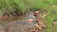 small stream zoom in Savanha GA - stock footage