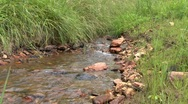 Stock Video Footage of small stream zoom in Savanha GA