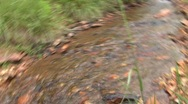 Stock Video Footage of small stream in Savanha GA