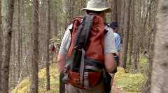Stock Video Footage of Hiking in the woods