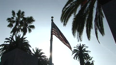 American Flag With Palm Trees - Medium Shot Stock Footage