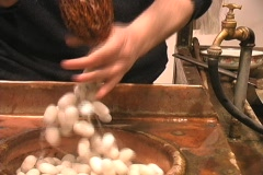 Pulling the silk from the silkworm Stock Footage