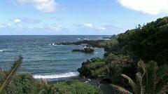 Maui black sand beach Hawaii ocean HD Stock Footage