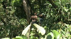 Maui jungle couple walking Hawaii romance HD Stock Footage