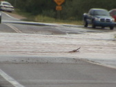 Stock Video Footage of Flashflood street with traffic waiting in AZ