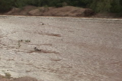 Tracking debris in a flash flood Stock Footage