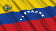 Stock Video Footage of Flag of Venezuela