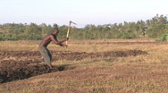 Planting field by Hand in Kenya Stock Footage