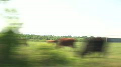 Rural driving 2 Stock Footage