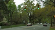 Stock Video Footage of Tree-lined street, Anytown, USA