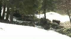 Moutain' river in the snow Stock Footage