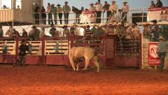 Rodeo Bull rider dummy hit M HD Stock Footage