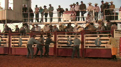 Rodeo Bull rider stepped on M HD Stock Footage