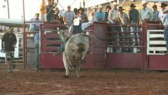 Rodeo bull riding thrown rural championship contest M HD Stock Footage