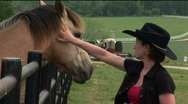 Stock Video Footage of cowgirl horse