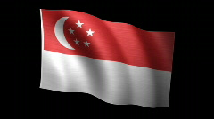 Singapore Flag A Stock Footage